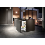 Built-In All Refrigerator UPR513 Energy Star 24in -Liebherr